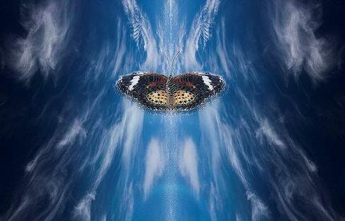 蝴蝶效应3
